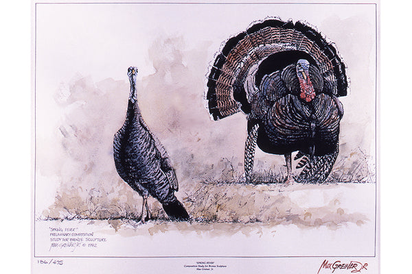 "Wildlife: Drawing Print  ""Spring Fever"" (Wild Turkey)"