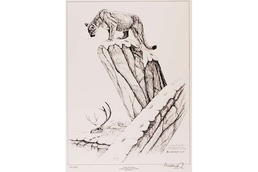 "Wildlife: Drawing Print  ""Coming Off the Rim"" (Cougar)"