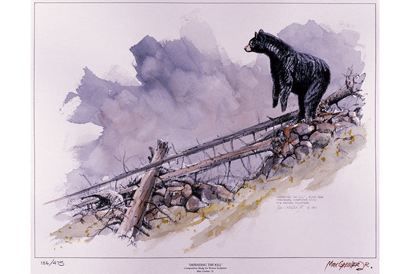 "Wildlife: Drawing Print  ""Defending the Kill"" (Black Bear)"