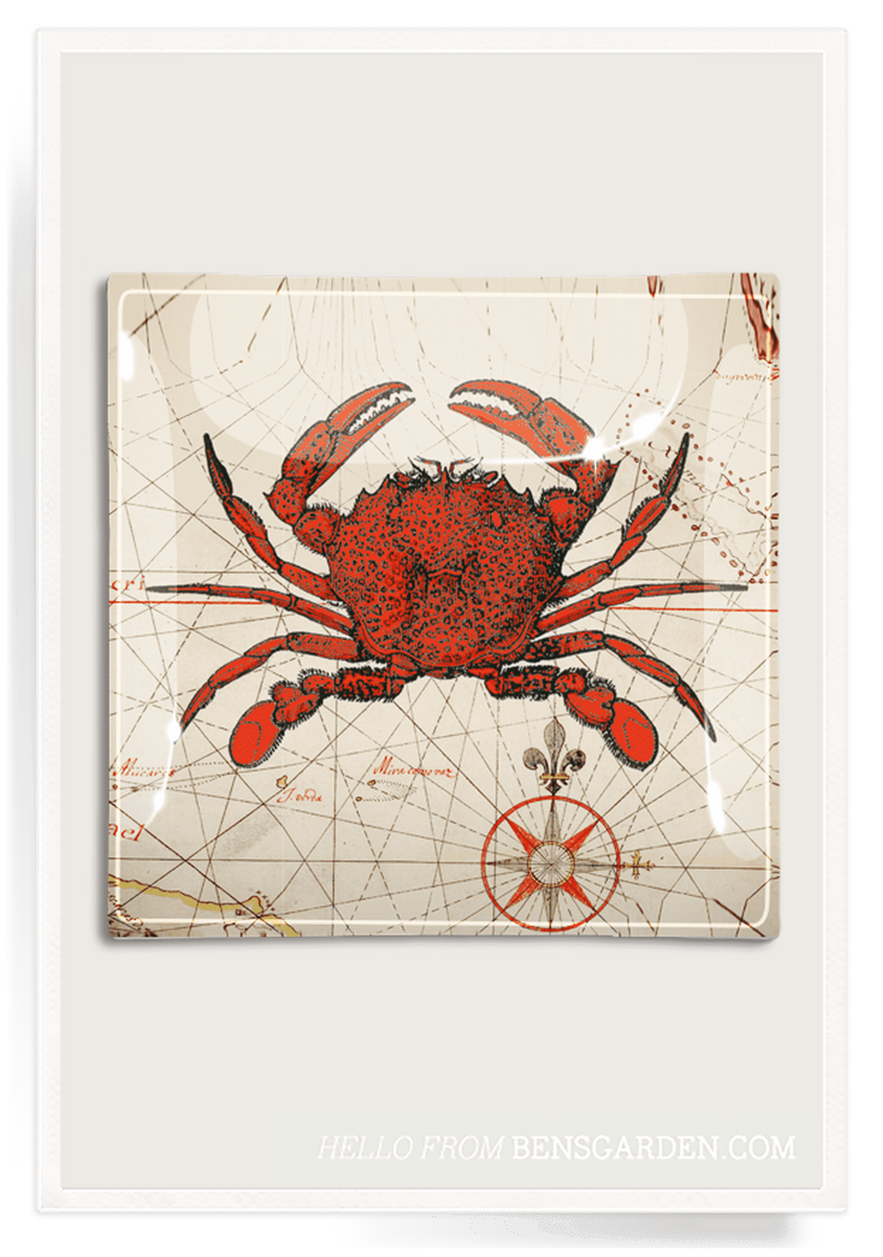 Bensgarden.com | Chesapeake Crab Decoupage Glass Tray - Bensgarden.com