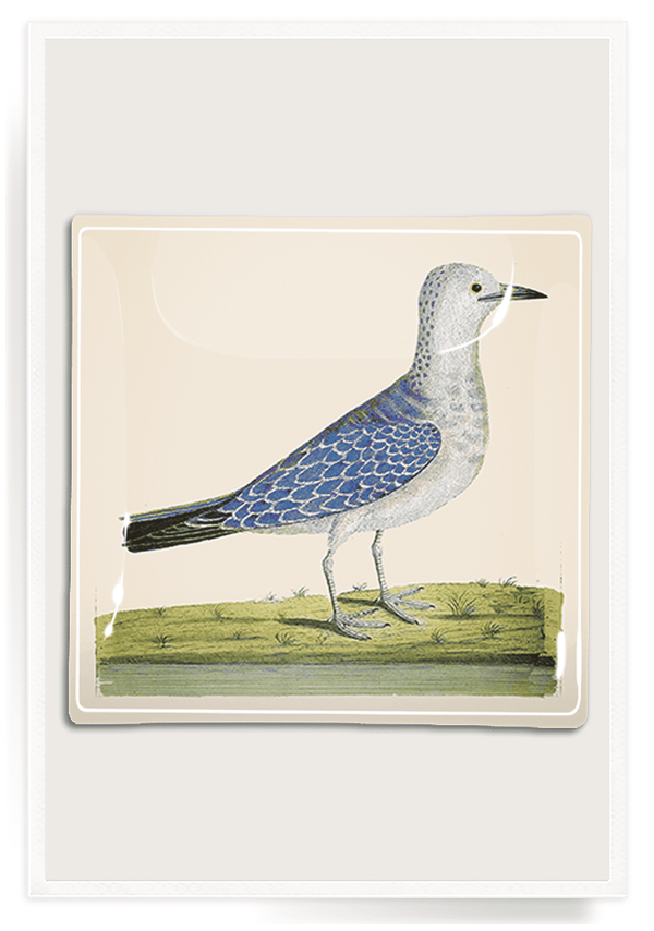 Bensgarden.com | Thoughtful Blue Bird Decoupage Glass Tray - Bensgarden.com