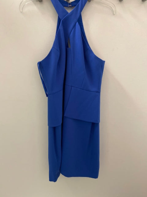 BCBG Size 10 Dress