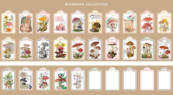 30PCS Collection Diary Material Package