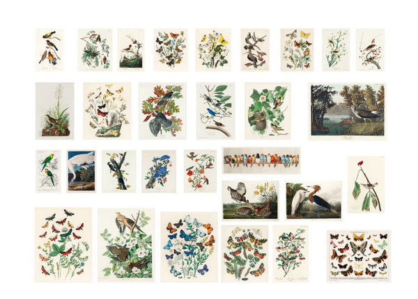 60PCS Time Flying Series Sticker Bag