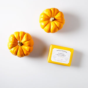 Apoterra Pumpkin and Wild Carrot Complexion Soap