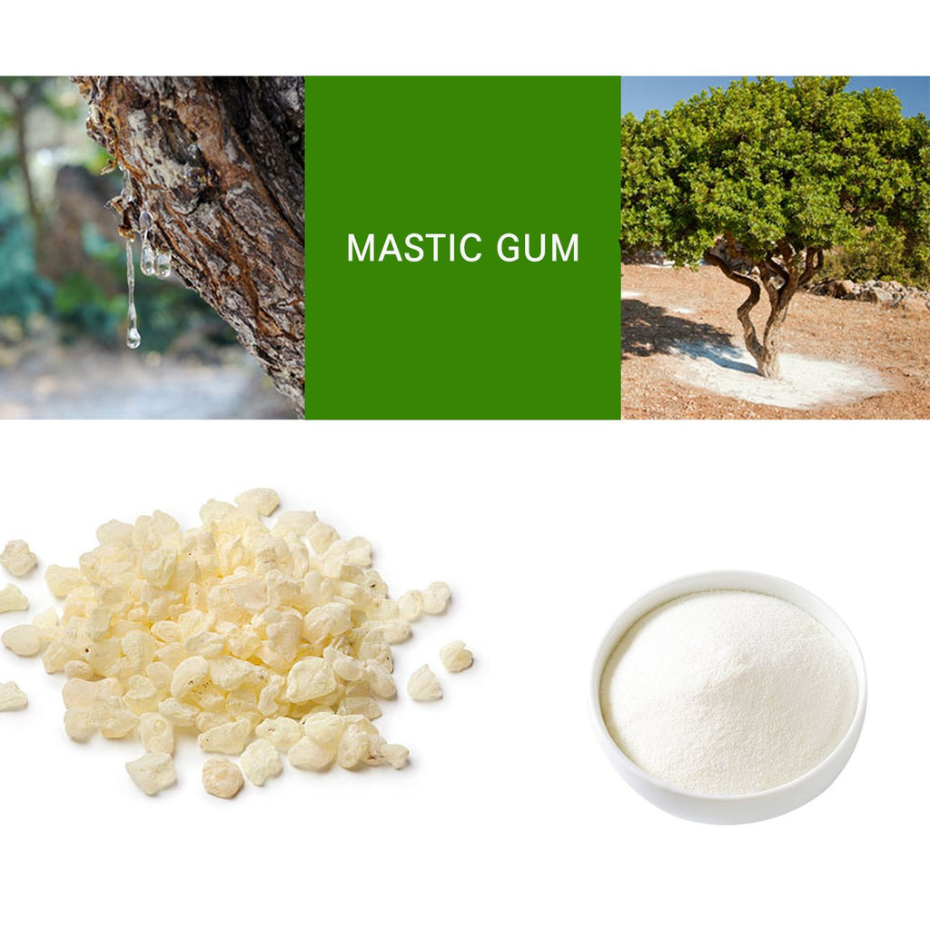 Prince Natural Mastic Gum Powder | 프린스 매스틱 검 분말