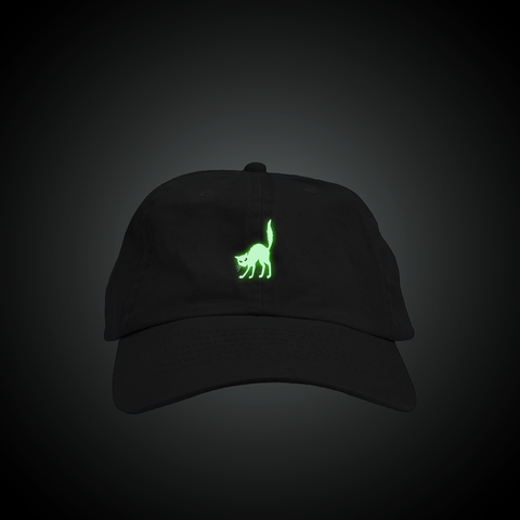 Glow in the Dark Cat Dad Hat