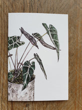 Load image into Gallery viewer, Botanical Cards