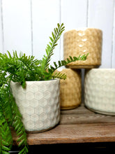 Load image into Gallery viewer, Geometric Honeycomb Plant Pot - 2 Sizes