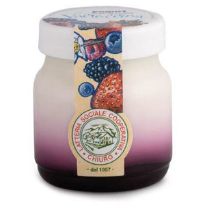 Whole Yogurt with Berries 150g CHIURO From Italy (Super Fresh) - Good Food
