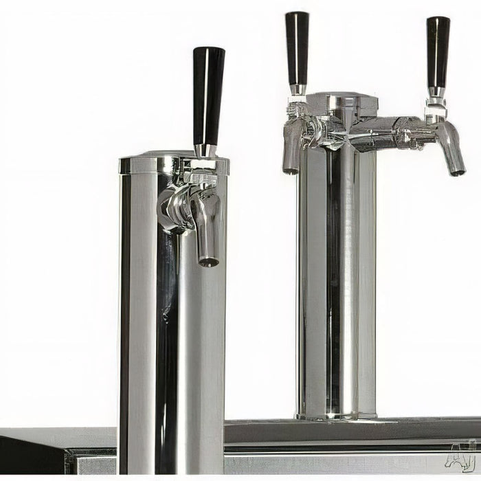 Perlick Beer Dispenser SS Solid Door, Hinge Left / 2 Taps HC24TB-3-1L2