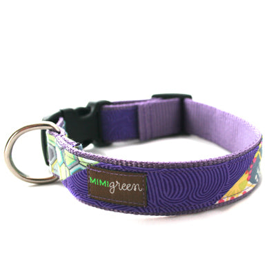Collier chien Roxy de Mimi Green