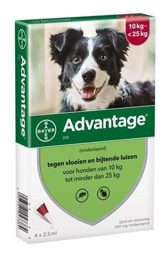BAYER ADVANTAGE HOND 4 PIPETTEN 250 10-25 KG 4 PIP - Hondenhappiness