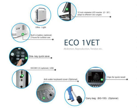 ECO1 VET Ultrasound Features