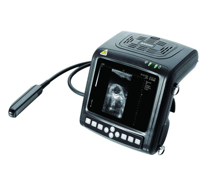 Demo Model KX5200V Veterinary Ultrasound