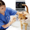 Chison Ebit50Vet--Veterinary Ultrasounds