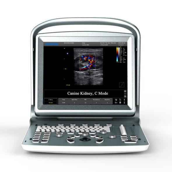 Chison ECO5Vet with Canine Kidney Color Doppler Image