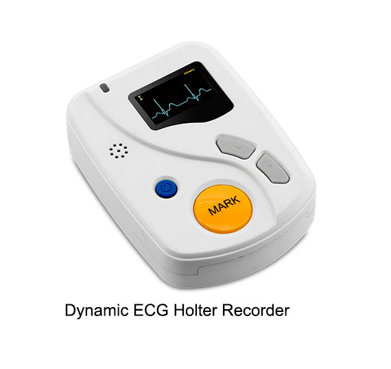 Portable 12 Lead ECG Holter Recorder