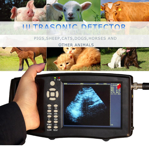 Portable Pig Ultrasound Veterinary Animal Pregnancy Test Instrument Color B Mode Ultrasonography Ultrasonic Detector