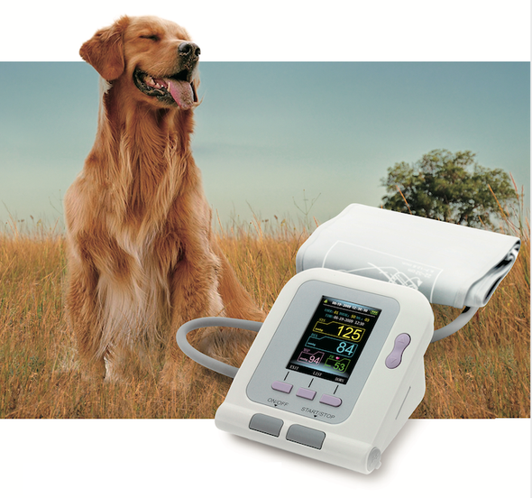 Digital Electronic Color Display Veterinary Clinic Blood Pressure Monitor