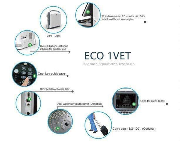 Chison ECO1Vet Features Adjustable Screen, Connectivity Ports, & LED Screen