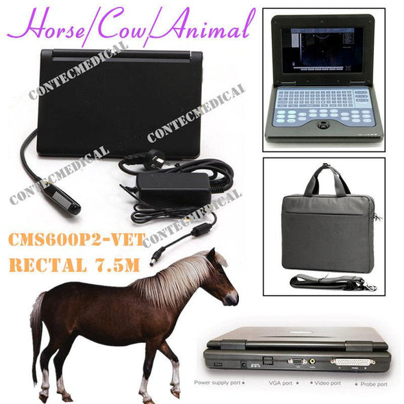 Veterinary Portable Laptop Machine Ultrasound Scanner,7.5 Rectal Probe,USA FedEx 658126923446