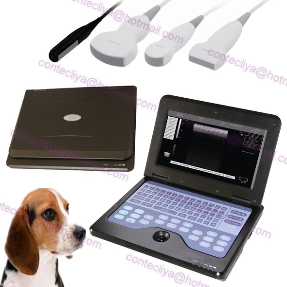US Seller CE Veterinary Digital Laptop Machine Vet Ultrasound scanner  3 Probes 658126923446