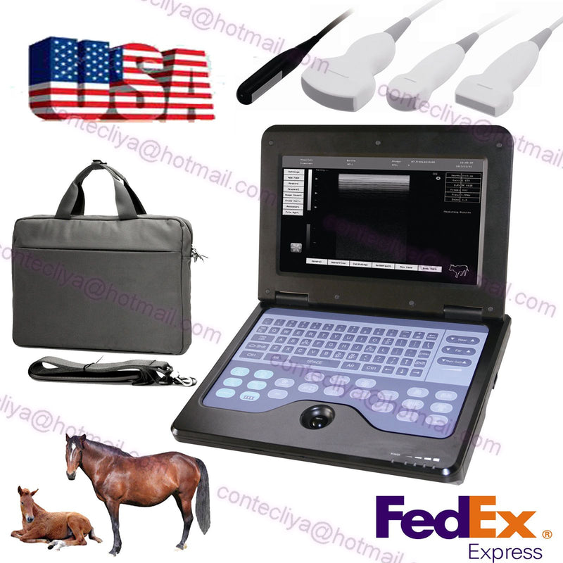 USA Fedex CE Veterinary Laptop Ultrasound scanner Notebook vet Machine+Two Probe 658126923446
