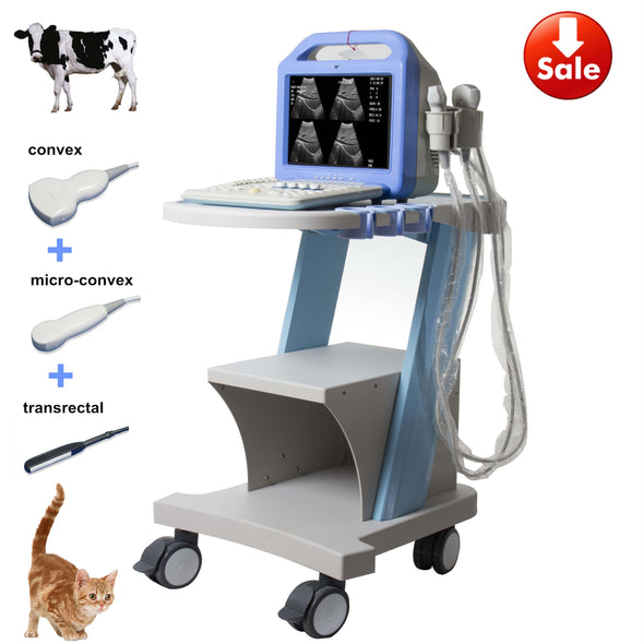 Three probes(convex+trans-rectal+micro-convex) pig horse cattle cat sheep cattle dog farm use animal ultrasound, veterinary ultrasound, ve
