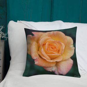 Rose Orange Delight Premium Pillow with White Back