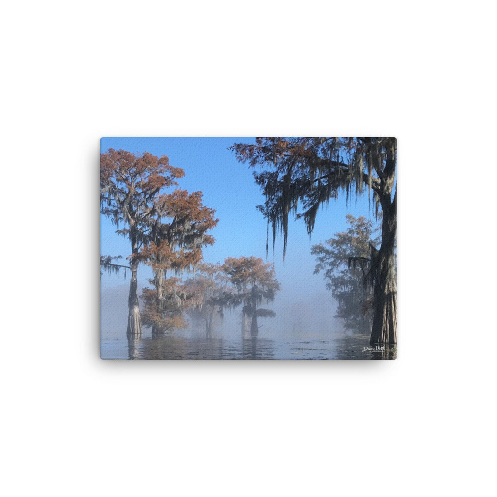 Into the Mist on the Atchafalaya.  12x16 Print on Canvas