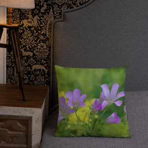 Oxalis-Sedum Premium Pillow with Yellow Back