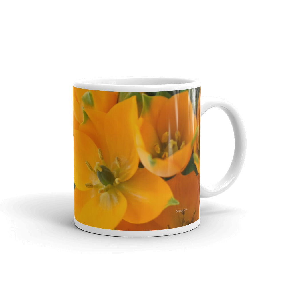 13. Orange Star Mug without a message