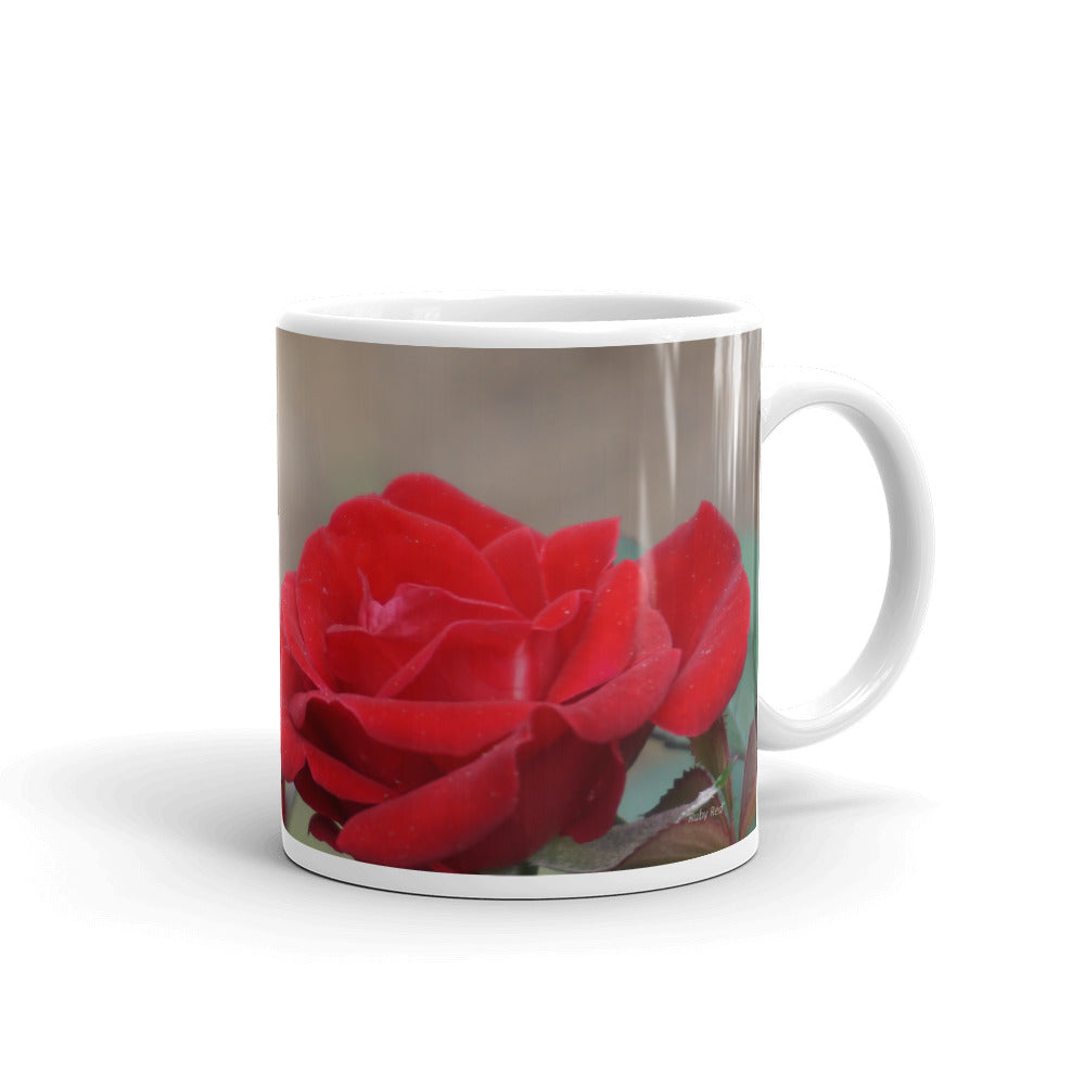 17b.  Miniature Rose-Ruby Red