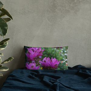 Siam Tulips Premium Pillow with White Back