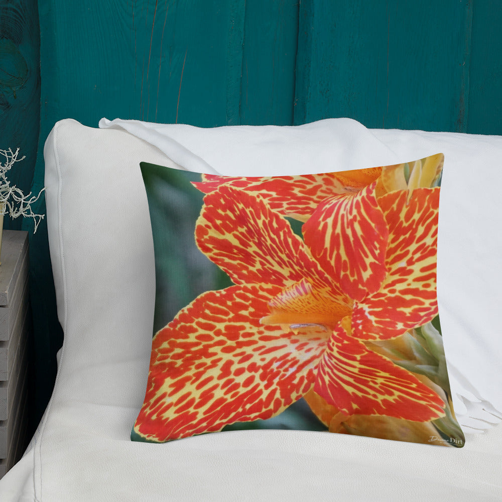 Dwarf Canna 'Picasso' Premium Pillow with Orange Back