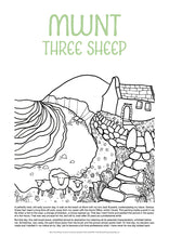 Load image into Gallery viewer, Mwnt Three Sheep - Helen Elliott Colouring Poster
