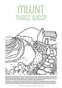 Mwnt Three Sheep - Helen Elliott Colouring Poster