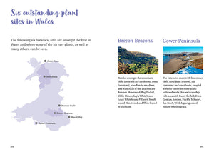 101 rare plants of wales by Tim Rich and Lauren Marrinan published by Graffeg in conjunction with Amgueddfa Cymru, National Museum Wales