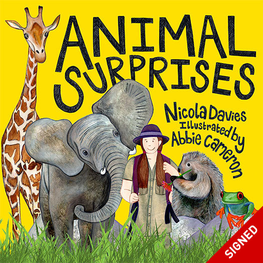 Animal Surprises Nicola Davies Abbie Cameron published by Graffeg Signed