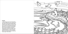 Load image into Gallery viewer, Helen Elliott Beach Life Colouring Book, published by Graffeg, St Brides