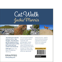 Load image into Gallery viewer, Cat Walk Jackie Morris Tom Cox published by Graffeg