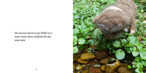 Helping Hedgehog Home by Karin Celestine, published by Graffeg, part of the Celestine and the Hare series