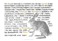 Load image into Gallery viewer, The Names of the Hare Poster