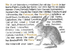 The Names of the Hare Poster