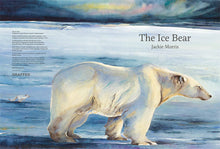 Load image into Gallery viewer, The Ice Bear