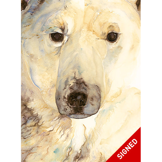 The Ice Bear (Signed Artist edition)