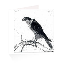 Load image into Gallery viewer, Jackie Morris Queen of the Sky Greetings Cards