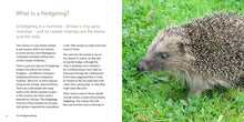 Load image into Gallery viewer, The Hedgehog Book