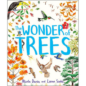 The Wonder of Trees by Nicola Davies